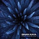 Sinan Kaya – Punch and Bloom